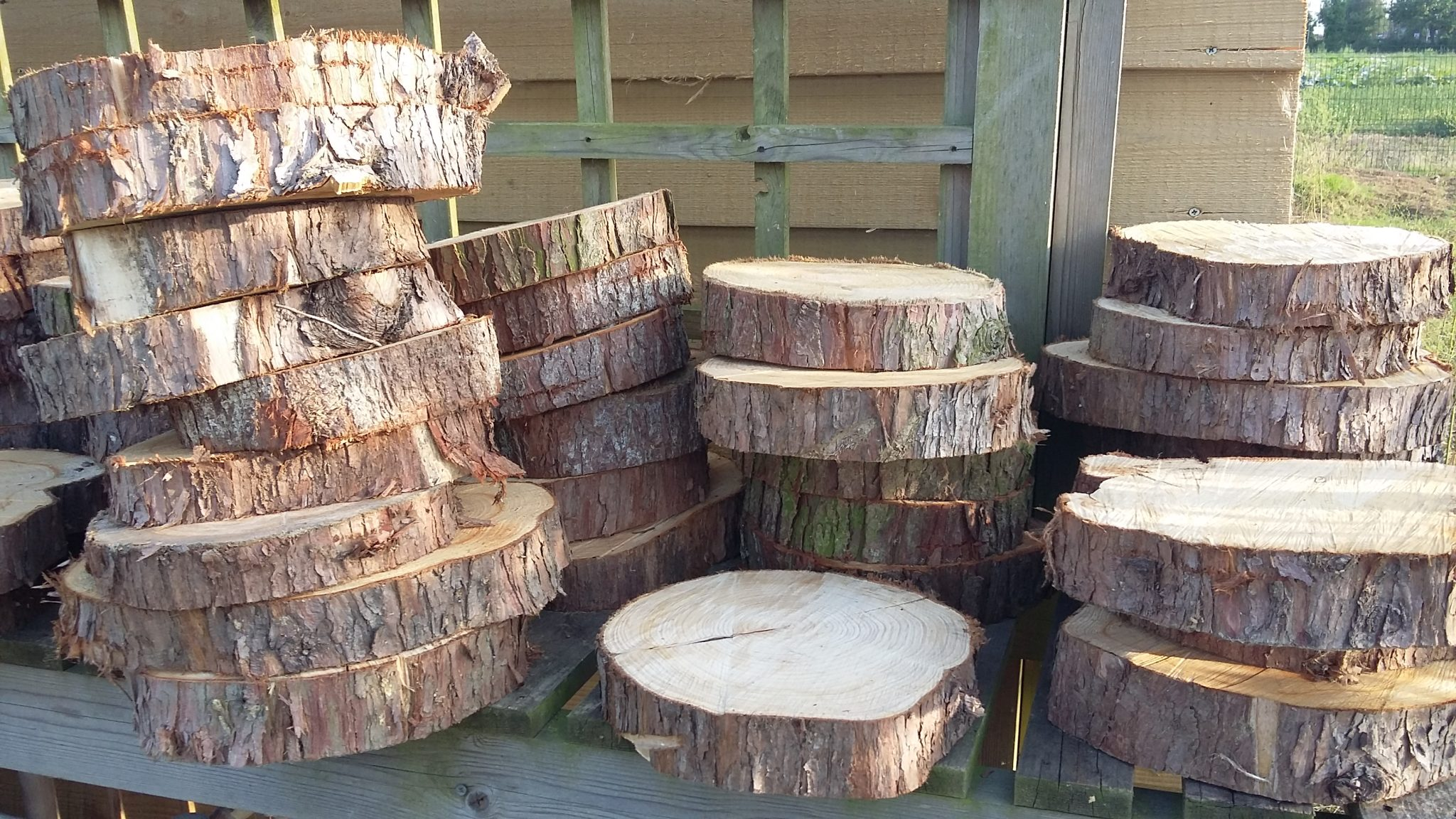 People love our untreated log slices for decoration, cake display or stepping stones.  £1.50 each