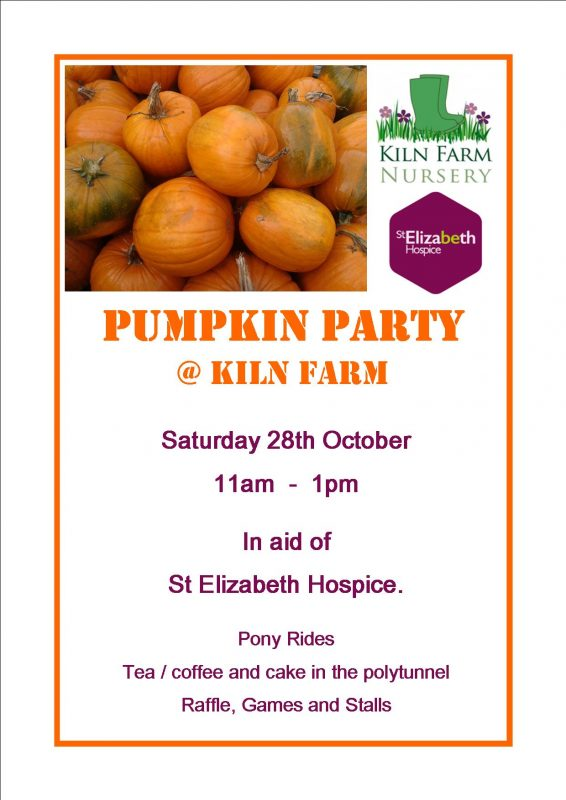 Pumpkin Party for St Elizabeth Hospice