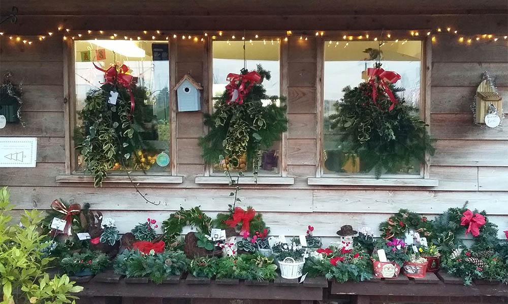 Christmas wealths at Kiln Farm Nursery