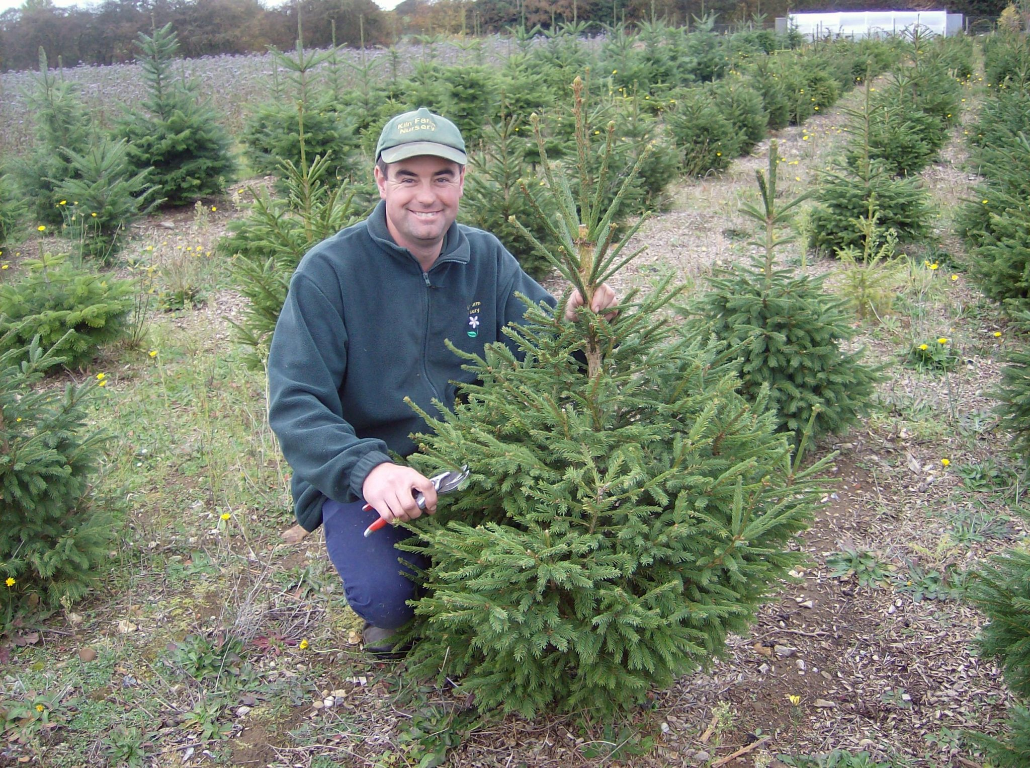Paul with one of his baby trees!