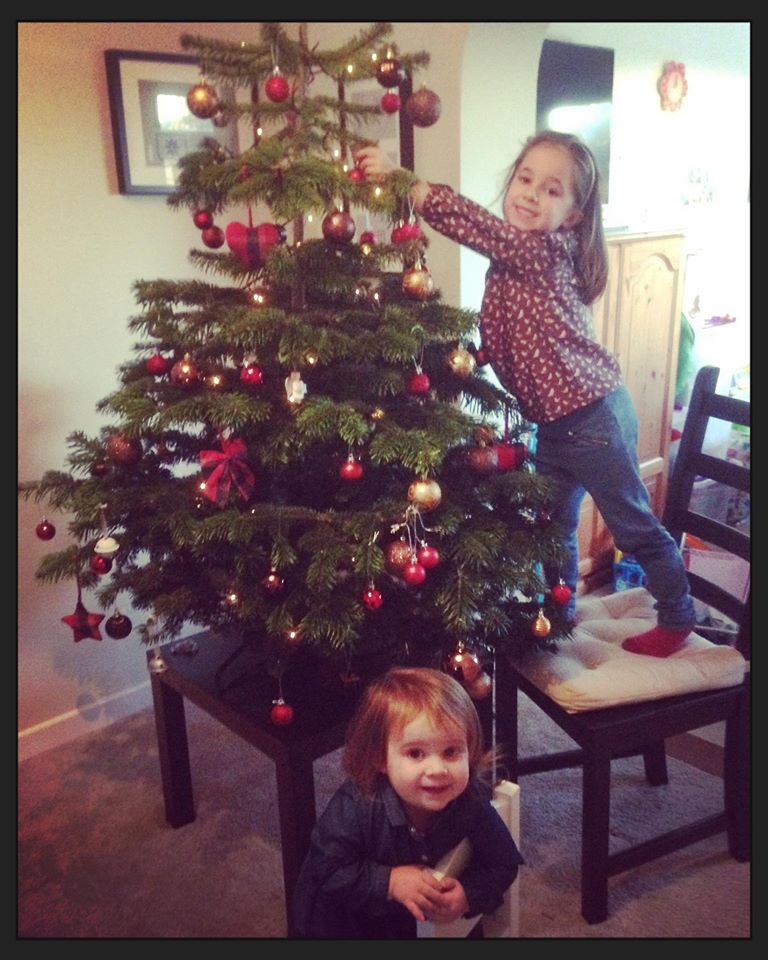 Care for your Christmas Tree