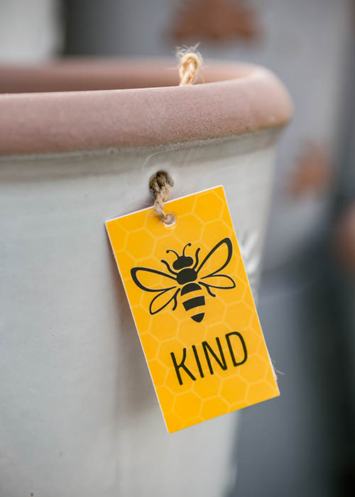 Bee kind label on a plant pot