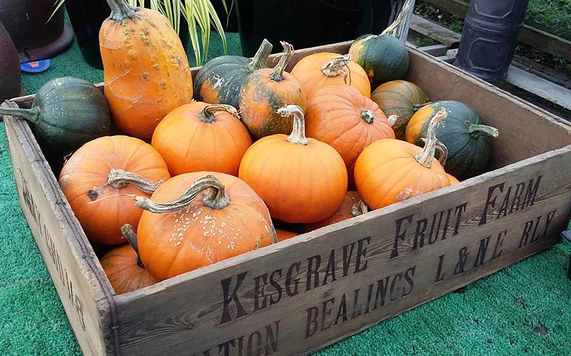 Pumpkins in a wooden crate