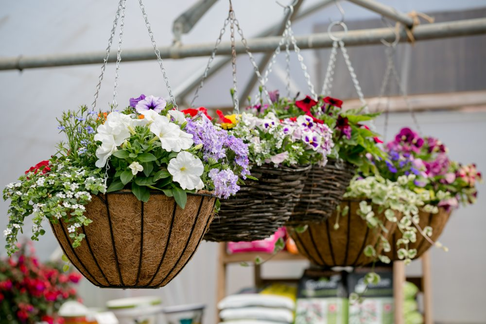 Hanging baskets in tunnel